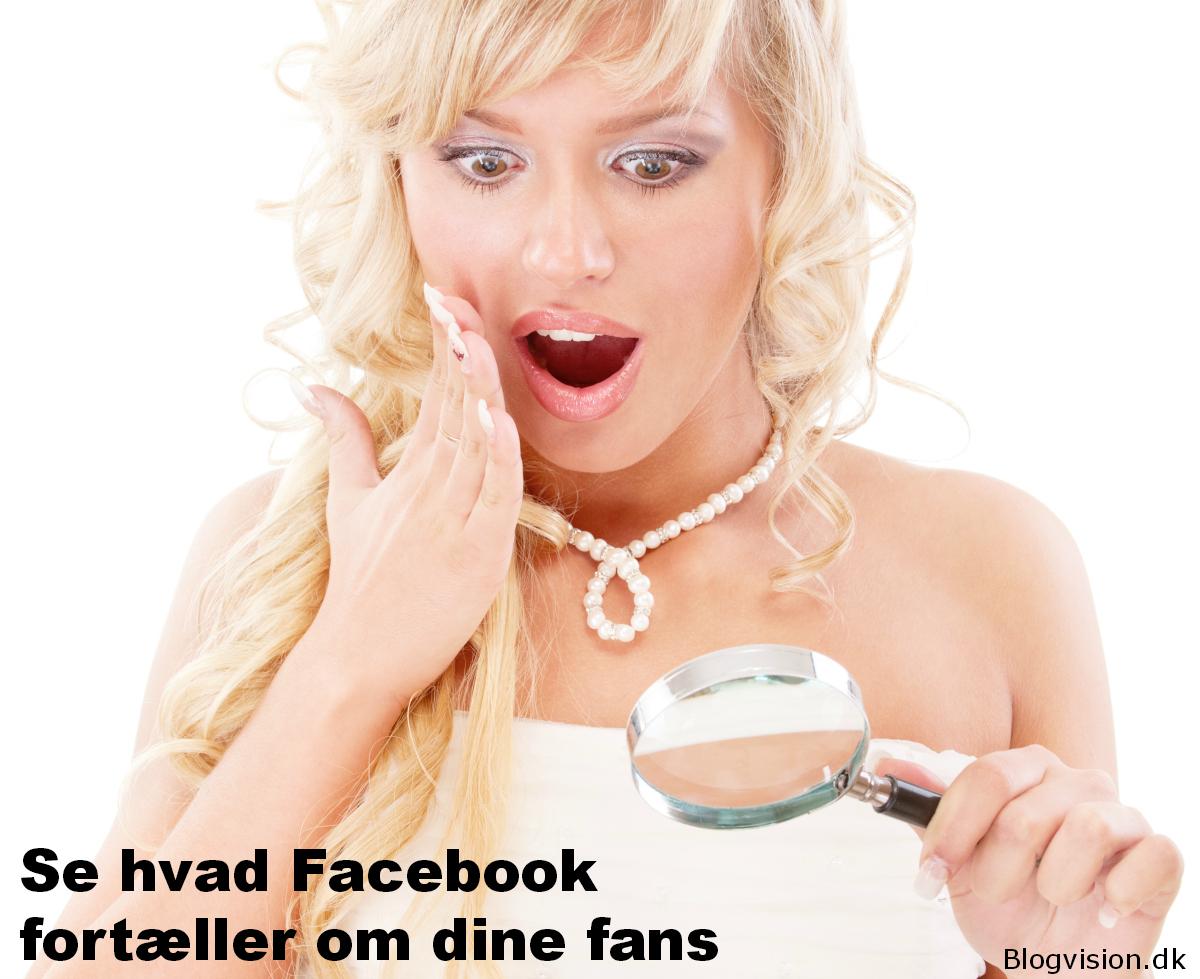 Brug Facebook Graph Search til se hvad dine fans liker